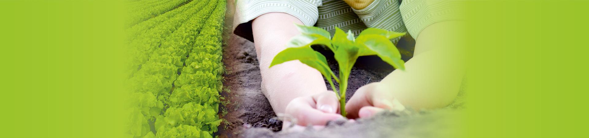 slide-future-farming-img